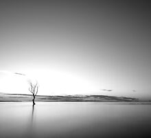 Black and White Sunrise by Adrian Alford Photography