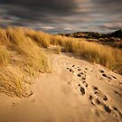 A Walk In The Dunes by NickMonk