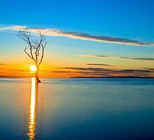 Holding the Sun by Adrian Alford Photography