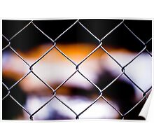Looking Through the Fence Poster