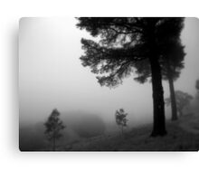 Scary Tree- Woodshill Road, Summertown Canvas Print