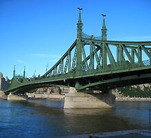 Liberty Bridge,Budapest,Hungary,Central-Eastern Europe by ambrusz