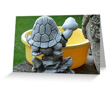 Shell i or not................ ummm?. Greeting Card