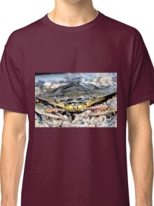 Blue Claw Crab in the Sand Classic T-Shirt
