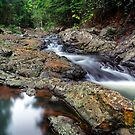 Guanaba Creek 2.0 by Tracie Louise