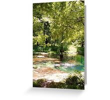 Peace and Quiet at Peacock Springs  Greeting Card