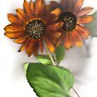Soft Sunflowers #2 by missmoneypenny