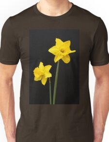 Daffodils in full bloom Unisex T-Shirt