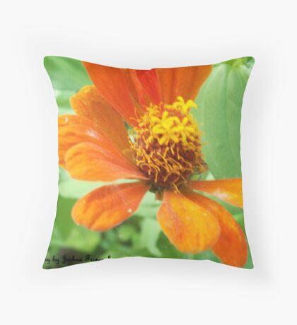 macro Throw Pillow