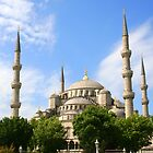 The Blue Mosque by Laurel Talabere