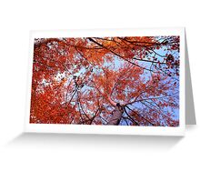 Autumn Delight Greeting Card