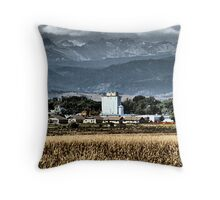 Smack Dab in the Middle Throw Pillow