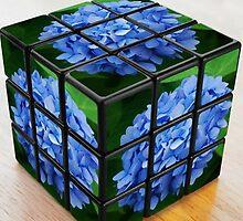 Hydrangeas Rubik's Cube by Marjorie Wallace