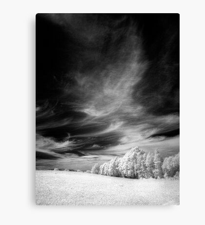 Sky and Nature Canvas Print