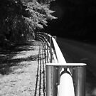 The long curved fence by Benjamin Kaufman