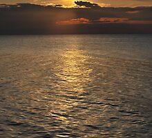 Bronze Lake by Nori Bucci