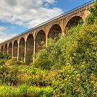 Viaduct over the Avon Valley by Tom Gomez