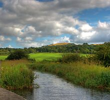 West Lothian Landscape by Tom Gomez