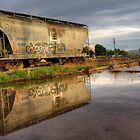 Rail Reflection by Sue  Cullumber