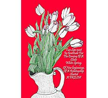 A pitcher of Tulips Photographic Print