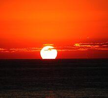 The Sun Rises by Evita