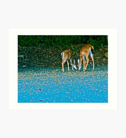 Dear Deers Art Print