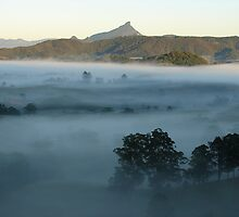 Mt Warning misty valley 3 by Pernilla Ahnstrom