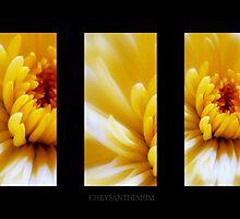 Yellow Sunbeams by Aj Finan
