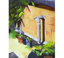 After Colley Whisson 2 Photographic Print
