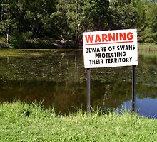 Beware Of Swans - Challenge Avatar by reflector