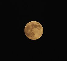 Full Moon 8-23-2010 by DonnaMoore