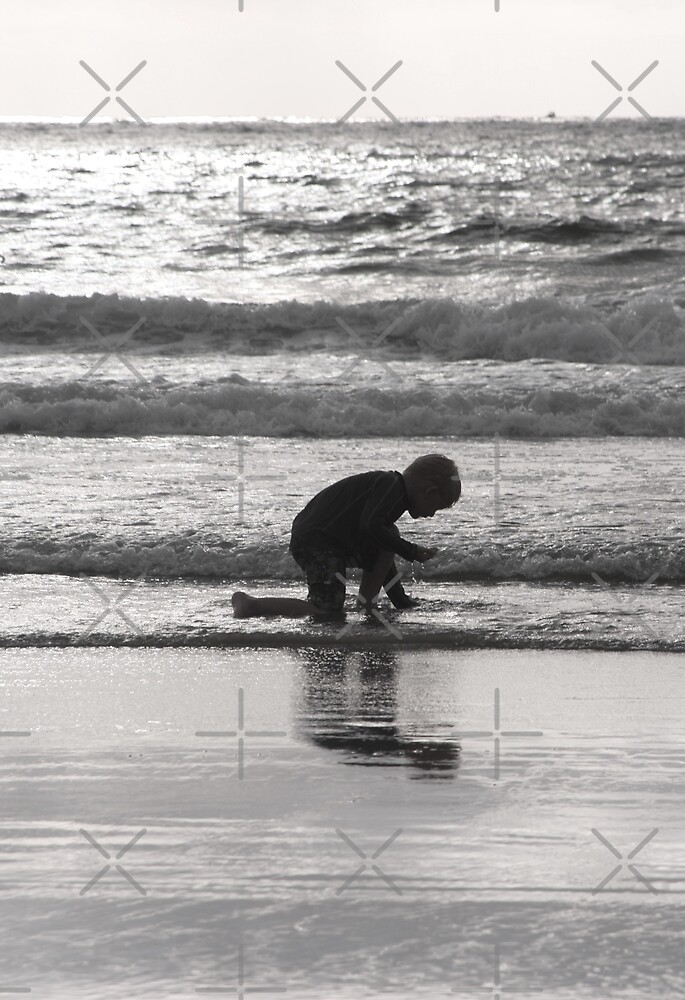 End of Day Seashell Hunt by Heather Friedman