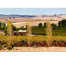 The Barossa Valley Photographic Print