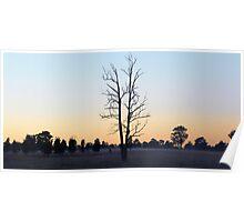 POKOLBIN SUNRISE-HUNTER VALLEY AUSTRALIA Poster