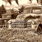 trucks in a field by Bill Dutting