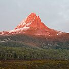 Barn Bluff at sunrise, Tasmania by tasadam