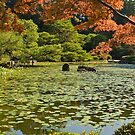 Ornamental pond, Heian Shrine, Kyoto, Japan. by johnrf