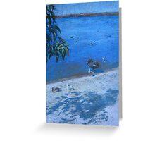 By the Lake, Perth, WA Greeting Card