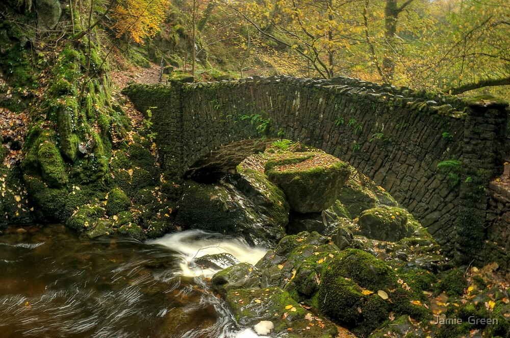 The Lower Bridge At Aira Force by Jamie  Green