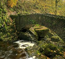 The Lower Bridge At Aira Force by VoluntaryRanger