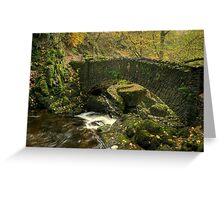 The Lower Bridge At Aira Force Greeting Card