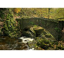 The Lower Bridge At Aira Force Photographic Print