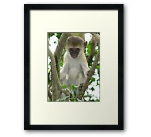 Yes, I Am Watching You Framed Print