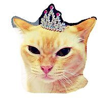 Queen Oliver Photographic Print