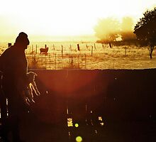 Lambing Season by Quentin  Croft