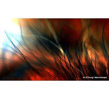 Raging Fire Photographic Print