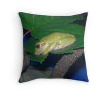 Frog on a Leaf - Virginia Living History Museum Throw Pillow