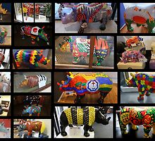 RHINO MANIA Collage  : Chester UK by AnnDixon