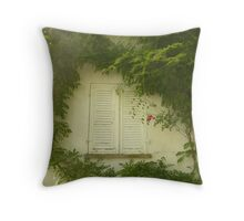 Natural window - Lake of Constance, Germany Throw Pillow