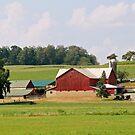 Charm Amish Farm by Geno Rugh